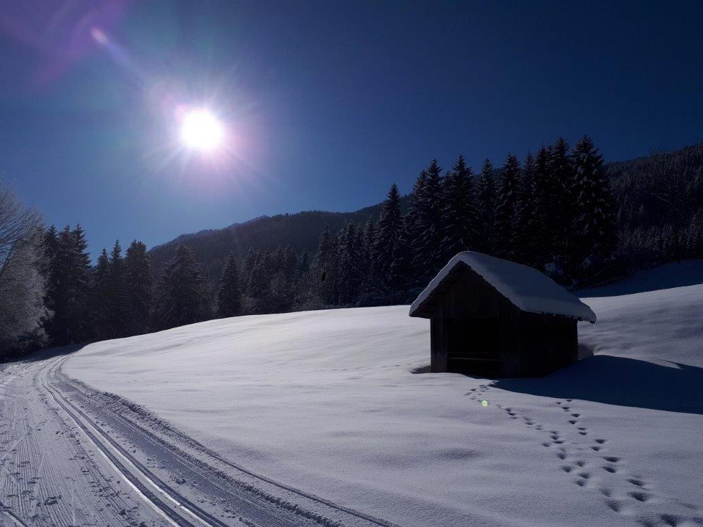 Mitterer Weissensee in Kärnten